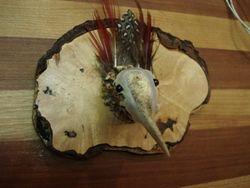 Woodcock mount on burlwood -Front view