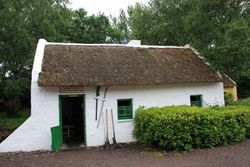 Thatched cottage - Kerry Bog Village