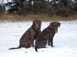 Koko and Kassey February 2006
