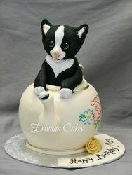 Cat in Teapot cake