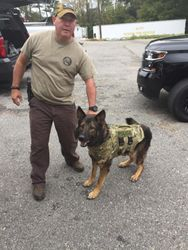 Oscar in his new vest