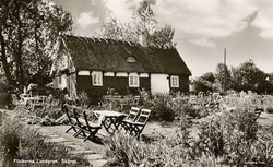 Flickorna Lundgren i Skaret 1949