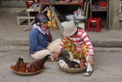Hoi An, Vietnam 9