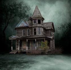 oud huis mist