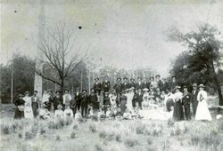 Large group in forest