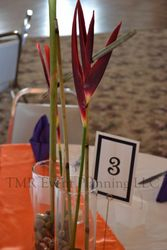 Center piece and numbers