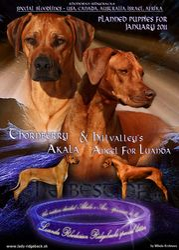 Ani and Akala 2010-by mk