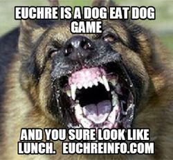 Euchre is a dog eat dog game and you sure look like lunch.