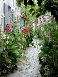 Along The way, Ile de Re France