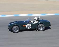 Third Place 1964 Cobra 289