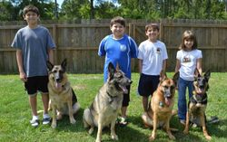Otero family and their dogs