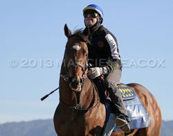 Paynter's First Day Back on Track 3
