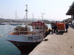 A fishing boat arrives back in Nazare