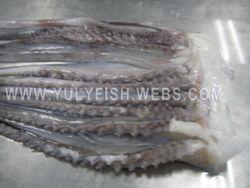 Squid Peru