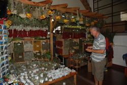 John buying spices in the market in Funchal