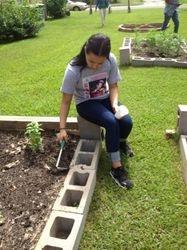 Community Garden at McCabe Roberts Church