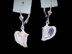 White gold conch earrings with diamond edges