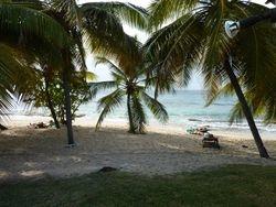 Zeilvakantie in het Caribisch gebied, de