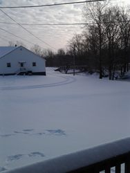 1ft of fresh Feb 2015 snow
