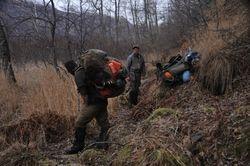 Jeff's bear hide on Kiche's pack
