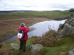 Picture of me, taking picture of tarn