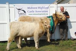 Grand Champion Cow with Calf Snowland First Lady and Snowland Lady's Lily