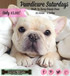 Pawdicure Saturday 2015