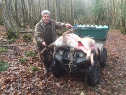 First deer from the new highseat