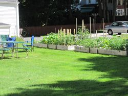 View of back yard and organic garden
