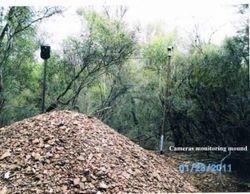 Monitoring the Mound