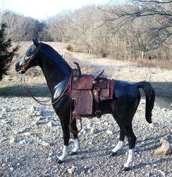saddle set #85
