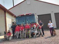 K9 Team Training in Greer, AZ 2020