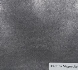 Cantina Magnetite