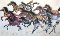 15 Wild Horses Return To Freedom