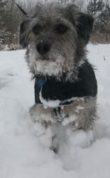 Check out my snowball legs