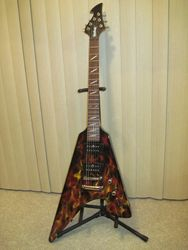 Washburn Pop Top W/Flame Graphics