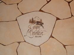 Wine Cellar Faux Stone floor close up...