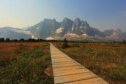 Follow The Boardwalk