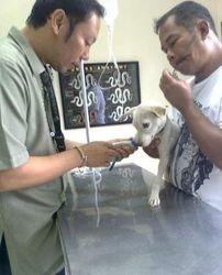 Randy and Nick at vets