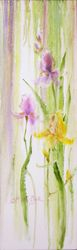 Spring's Silk