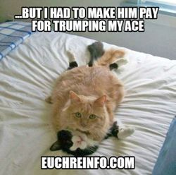 ...but I had to make him pay for trumping my ace.