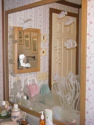 Sea lIfe Bathroom Mirror
