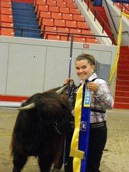 Champion Intermediate Yearling Heifer
