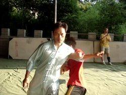 Maestro Fu enseña Tuishou