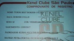 J� registrada e ter� o Pedigree Oficial da CBKC/FCI