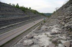 Huge roadcut full of Ordovician fossils.