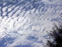 Afternoon high clouds - undulating cloudscape