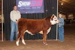 First in Class Journagan Ranch Futurity