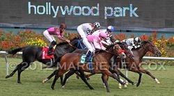 Hollywood Park Race