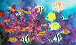 Aquarium - 1